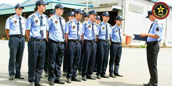 Đội ngũ nhân viên trẻ trung và giàu kinh nghiệm của Bảo Vệ Thanh Niên